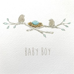 NB5  Baby Boy Egg