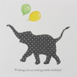 Unforgettable Birthday