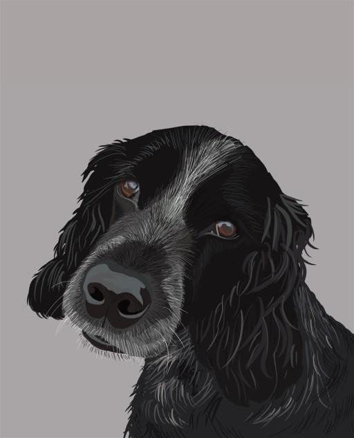 Framed Pet Portraits
