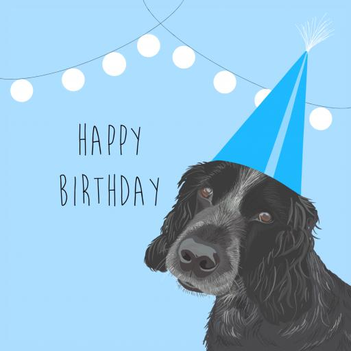 B26 Blue Happy Birthday Spaniel