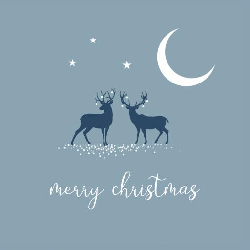 CH17 Merry Christmas Deer