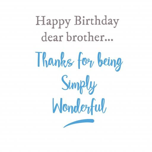 BR1 Wonderful Brother